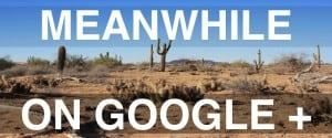 Google+ SEO Meme