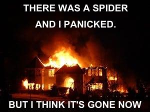 Web Crawler SEO Meme